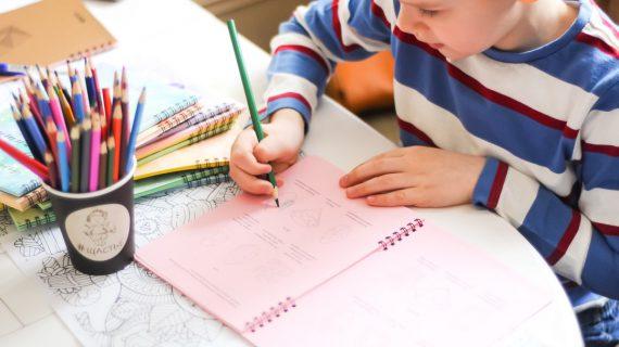 Дневник успеха для детей | Домашнее издательство Skrebeyko