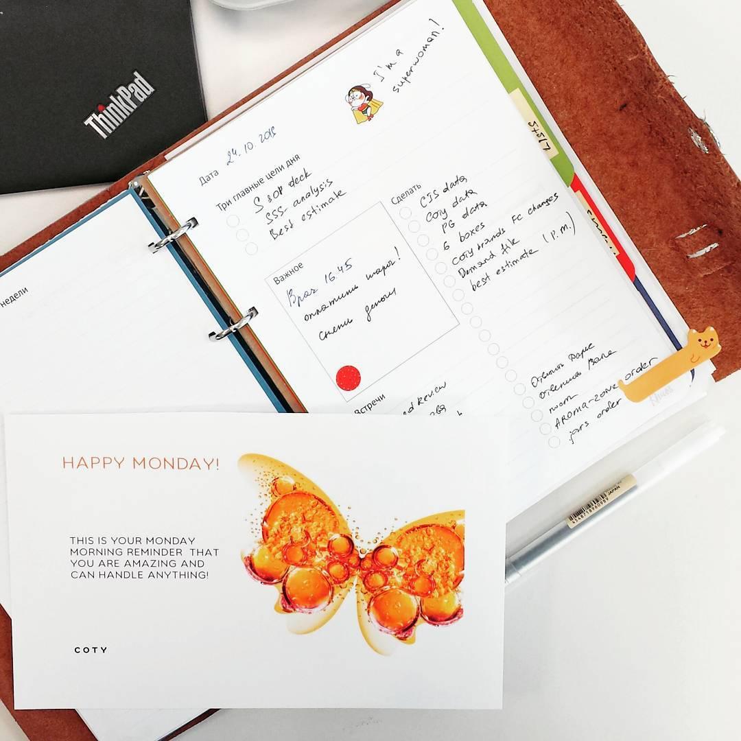 Сто дней до нового года | Домашнее издательство Skrebeyko
