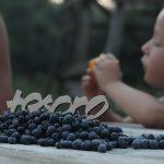Четыре соглашения на каждый день | Домашнее издательство Skrebeyko