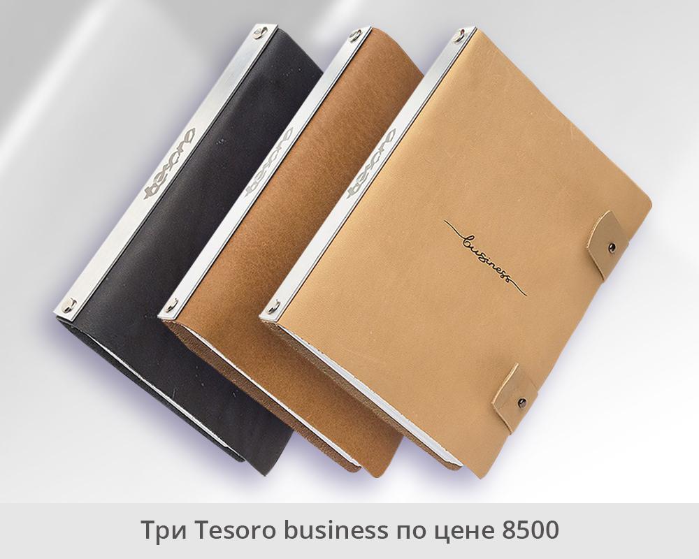 3 Tesoro business | Домашнее издательство Skrebeyko