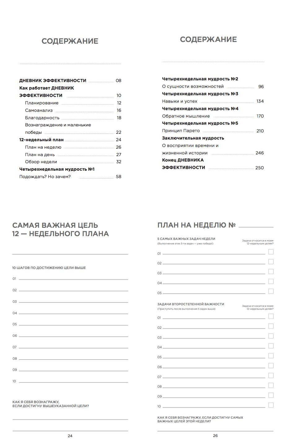 Дневник эффективности   Домашнее издательство Skrebeyko